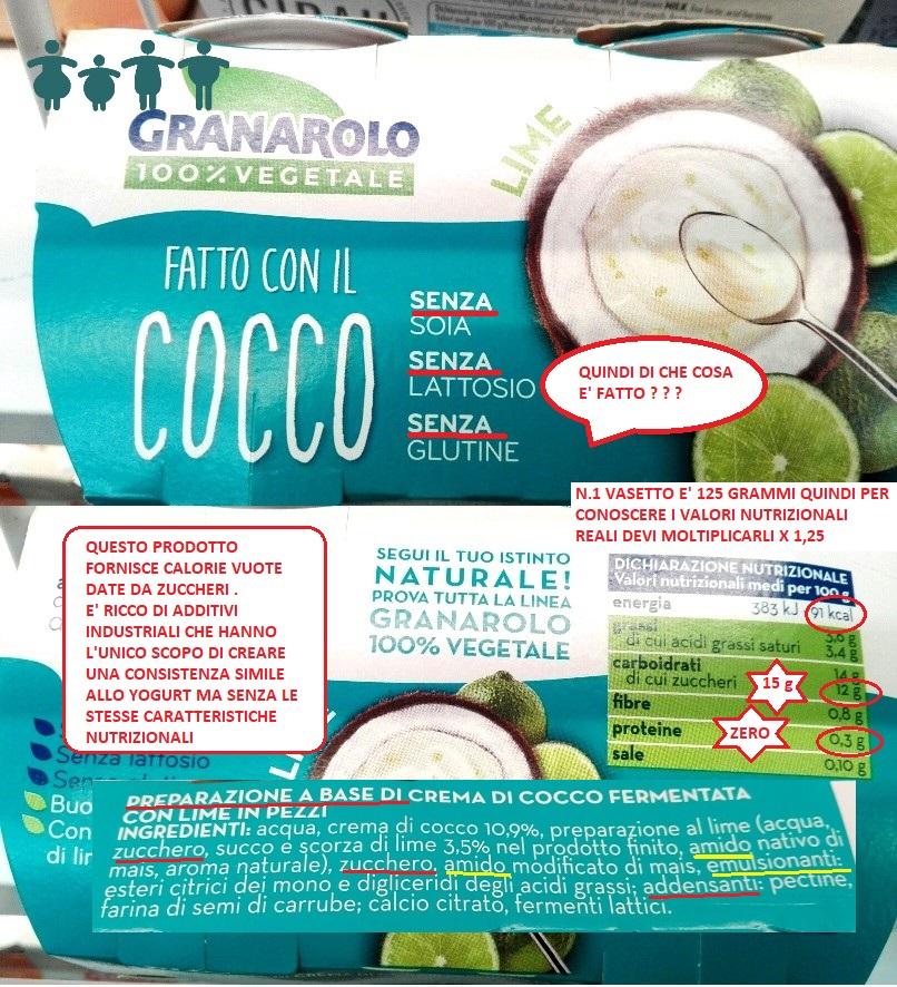 yogurt vegetale al cocco
